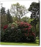 Beautiful Muckross Gardens In Spring Canvas Print