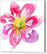 Beautiful Pink Flower Canvas Print