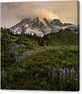 Beautiful Rainier Wildflower Meadows Canvas Print