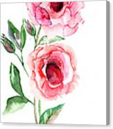 Beautiful Roses Flowers Canvas Print