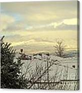 Beautiful Sparkling Snow Canvas Print