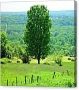 Beautiful Pennsylvania Summer Scene - Colorful Landscape - Painting Like Canvas Print
