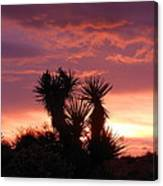 Beautiful Sunset In Arizona Canvas Print