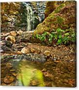 Beautiful View Of Upper Falls Located In Uvas Canyon County Park. Canvas Print