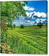 Summer View In Yorkshire Canvas Print