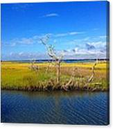 Beautiful View Topsail Island Canvas Print