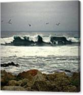 Beautiful Waves On The Monterey Peninsula Canvas Print