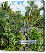 Beautiful Winter Day In Florida  Canvas Print