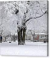 Beautiful Winter Park Canvas Print