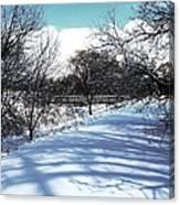 Beautiful Winter View Canvas Print