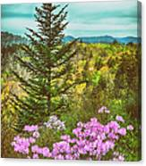 Beauty In The Forest II Canvas Print