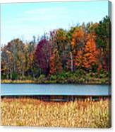 Beauty Of Fall Canvas Print