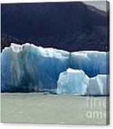 Beauty Of Icebergs Patagonia 6 Canvas Print