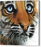 Beauty Of My Mother's Eyes Canvas Print