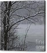 Beauty Of Winter  Canvas Print