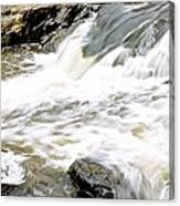 Beauty On The Eno River Canvas Print