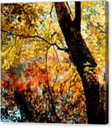 Beauty Reflected Canvas Print