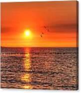 Beauty Sunset Canvas Print
