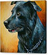 'beaux' Canvas Print