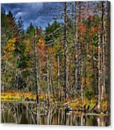 Beaver Pond Reflections Along The Highland Scenic Highway Canvas Print