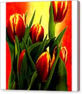 Becky Tulips Art2 Jgibney The Museum Gifts Canvas Print
