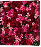 Bed Of Red Roses Canvas Print