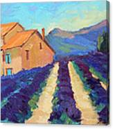 Bedoin - Provence Lavender Canvas Print
