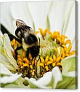 Bee All That You Can Bee Canvas Print