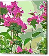 Bee Balm Canvas Print