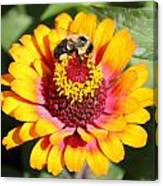 Bee Bright Canvas Print