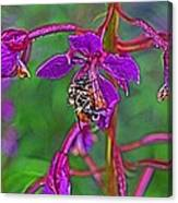 Bee In Hdr Canvas Print