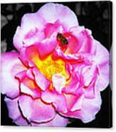 Bee Landing Canvas Print