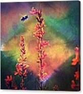 Bee N Wildflowers Diamond Earth Tones Canvas Print