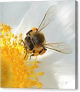 Bee-u-tiful Squared Canvas Print