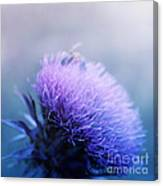 Bee-utiful  Canvas Print