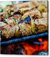 Beef Kababs On The Grill Closeup Canvas Print