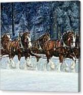 Clydesdales 8 Hitch On A Snowy Day Canvas Print