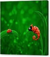 Beetle Chameleon Canvas Print