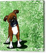 Befuddled Brindle Boxer Canvas Print