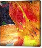Beguile Canvas Print