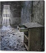 Behind The Bars Canvas Print