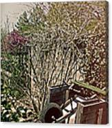 Behind The Garden Canvas Print