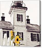 Behind The Lighthouse  Canvas Print