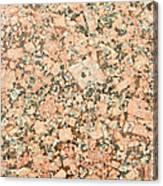 Beige Granite  Canvas Print