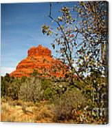 Bell Rock Vista Sedona  Az Canvas Print
