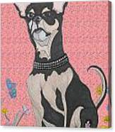 Bella Bella Pink Canvas Print