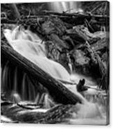 Below Anna Ruby Falls In Black And White Canvas Print
