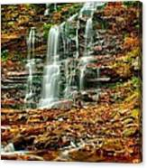 Below Ganoga Falls Canvas Print