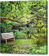 Bench In Park  Canvas Print