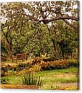 Bench In The Garden Canvas Print